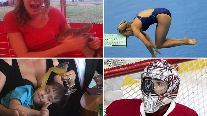 Collection of funny photographs with amazing timing, awkward situations in sports, a woman having her boob bit by a baby deer.