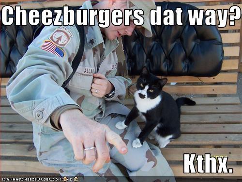 Cheezburger Image 2432681728