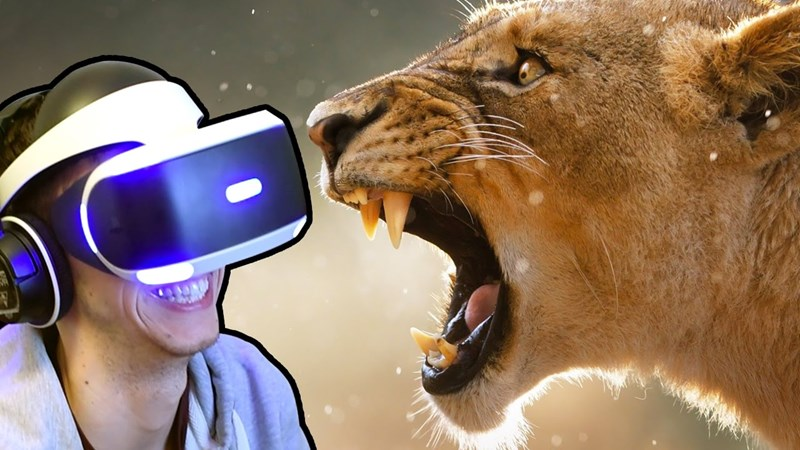 Virtual reality platform allows you to watch wildlife animals in person