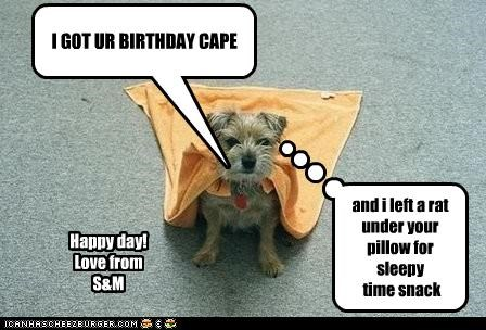 I GOT UR BIRTHDAY CAPE and i left a rat under your pillow for sleepy time snack Happy day! Love from S&M