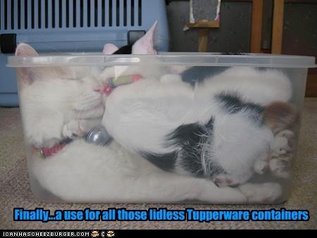 nap tupperware - 2438436096