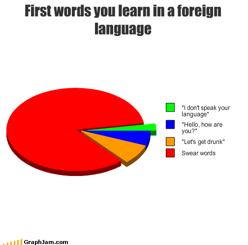 curse words,drunk,foreign,hello,language,learn,Pie Chart,speak,swear words,words