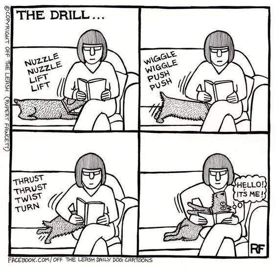 A comic of a dog snuggling up to his owner as shes reading in an annoying way - cover comic for 10 comics that show how hard it is being a dog owner