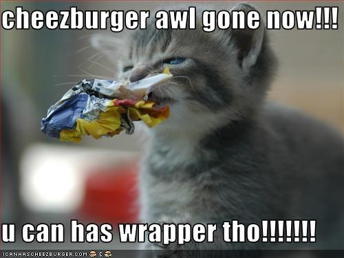 Cheezburger Image 2449671424