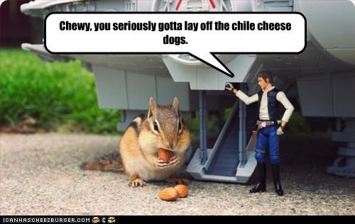 Cheezburger Image 2451990784