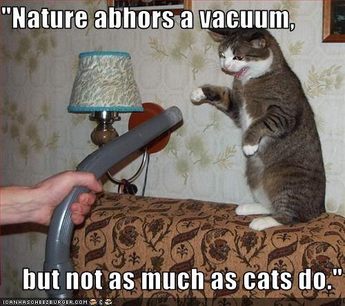 do not want vacuum - 2453180672