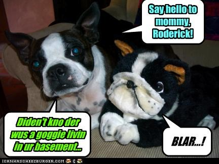 Diden't kno der wus a goggie livin in ur basement... Say hello to mommy, Roderick! BLAR...!