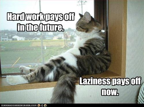 lazy - 2455633664