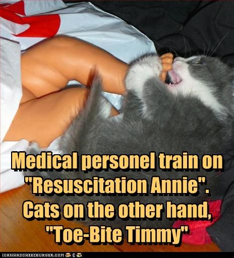 medical personel train on resuscitation annie cats on the other