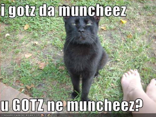 Cheezburger Image 2456535296