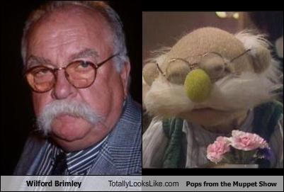 mustache pops The Muppet Show wilford brimley - 2456967936