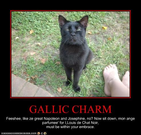 GALLIC CHARM Feeshee, like ze great Napoleon and Josephine, no? Now sit down, mon ange parfumee' for I,Louis de Chat Noir, must be within your embrace.