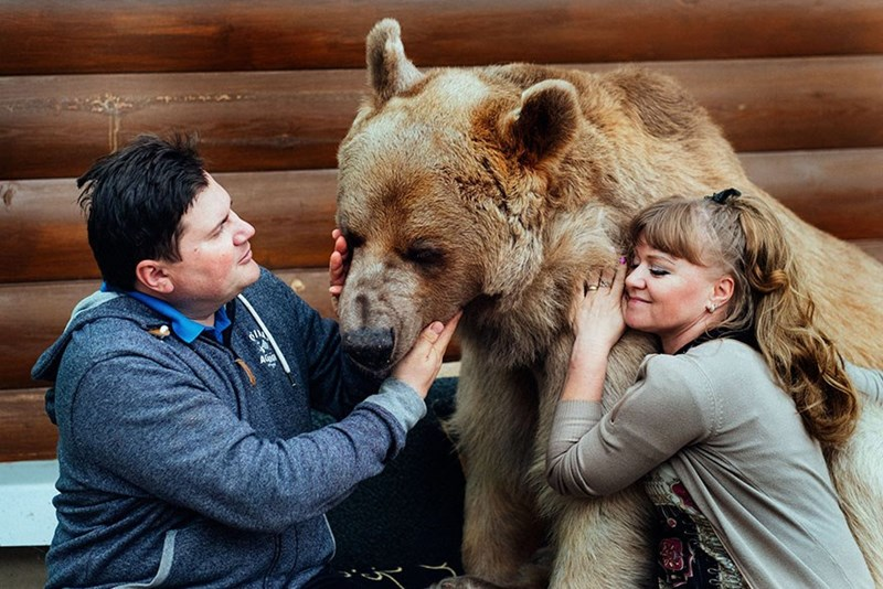 Russian couple adopted a bear 23 years ago and are still living together