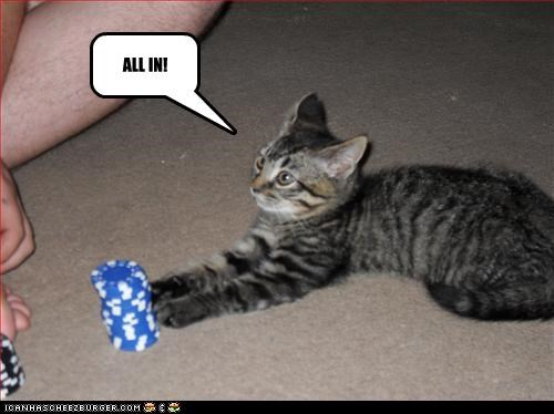 games,playing,poker