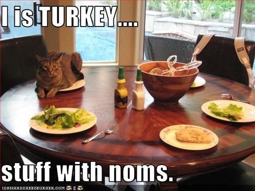 fud lies nom nom nom plotting thanksgiving - 2466048768