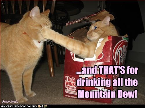...and THAT'S for drinking all the Mountain Dew! FubarSnafu