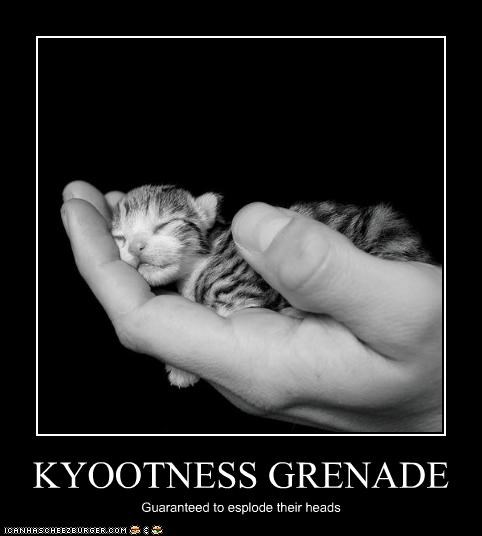KYOOTNESS GRENADE Guaranteed to esplode their heads