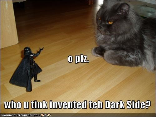 basement cat evil star wars - 2467990272