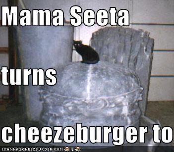 Cheezburger Image 2468263168