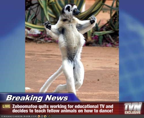 Breaking News - Zoboomafoo quits working for educational TV and