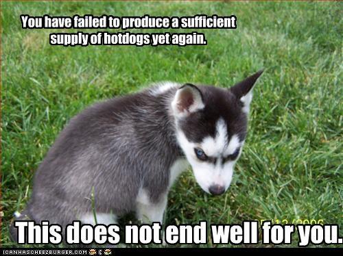 evil hotdog malamute puppy scary trouble - 2470984448