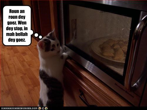 belly fud microwave nom nom nom want - 2472135424