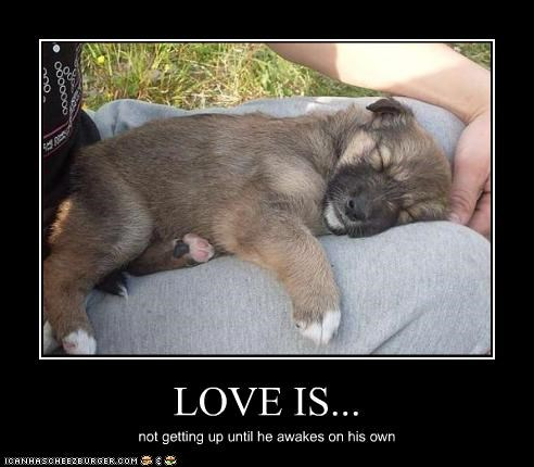 LOVE IS... not getting up until he awakes on his own
