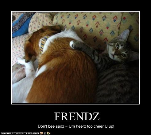 FRENDZ Don't bee sadz ~ Um heerz too cheer U up!