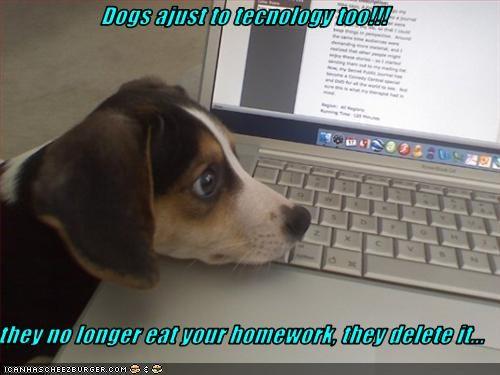 beagle computer delete eat homework technology - 2477523200