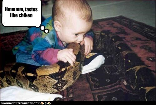 Hmmmm, tastes like chiken