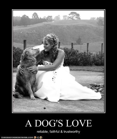 A DOG'S LOVE reliable, faithful & trustworthy