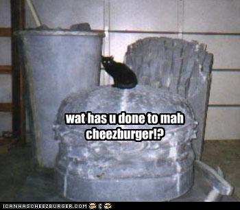Cheezburger Image 2484438272