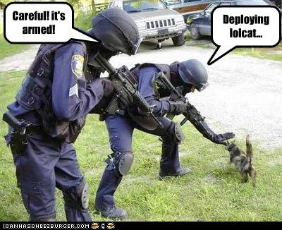 Deploying lolcat... Careful! it's armed!
