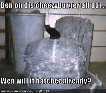 Cheezburger Image 2489652480