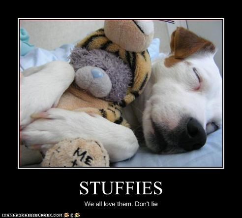 STUFFIES We all love them. Don't lie