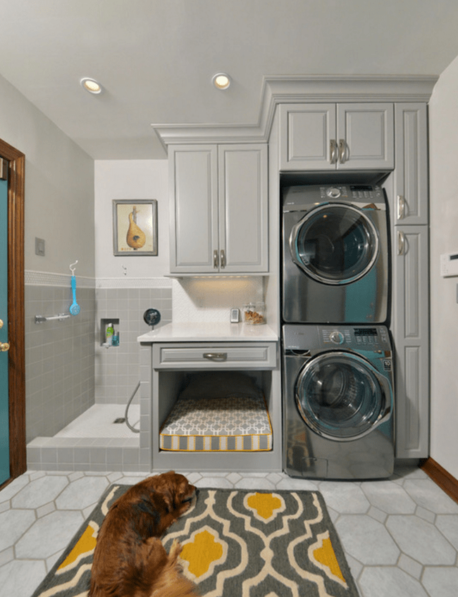 11 Dog Friendly Home design ideas