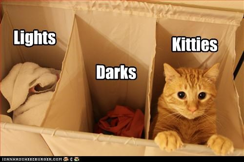 Lights Darks Kitties