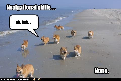 uh, Bob. . . Nvaigational skills. . . None.