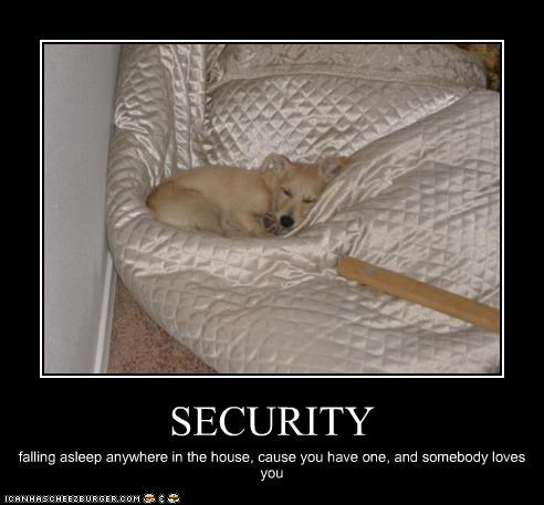 asleep,house,love,Sad,security