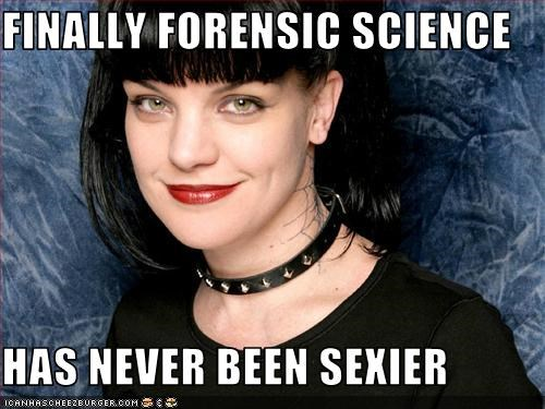 Finally Forensic Science Has Never Been Sexier Cheezburger Funny Memes Funny Pictures