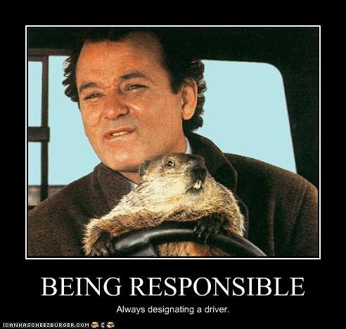 bill murray comedian groundhogs day - 2512486144