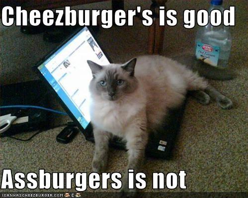 Cheezburgers Is Good Assburgers Is Not Cheezburger Funny Memes
