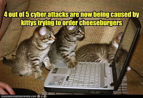 attacking,cheezburger,cute,kitten,laptop,mischief