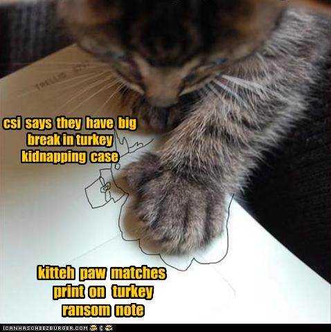 csi says they have big break in turkey kidnapping case kitteh paw matches print on turkey ransom note