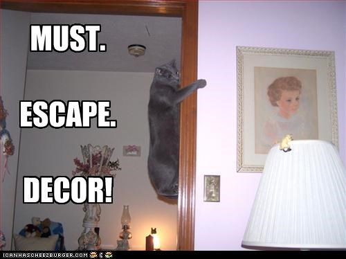 Decor Kitteh is AGHAST
