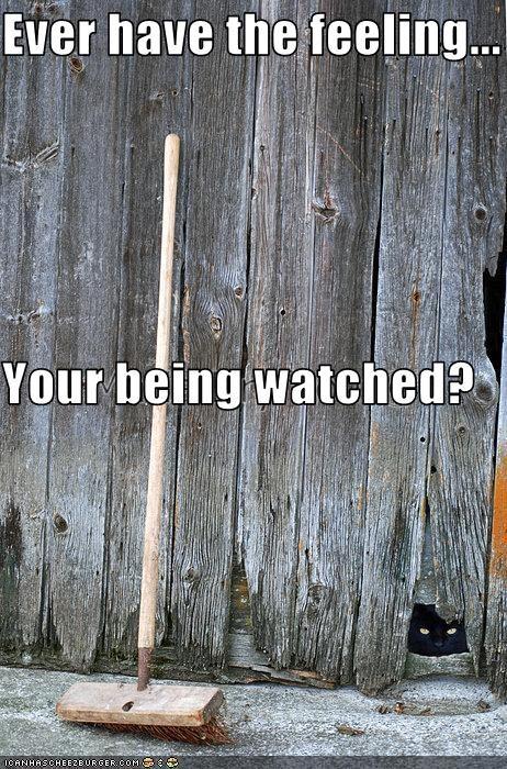 creepy spying watching - 2522780416
