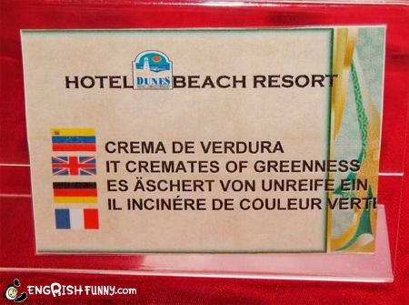 beach,cremate,g rated,green,resorts,signs