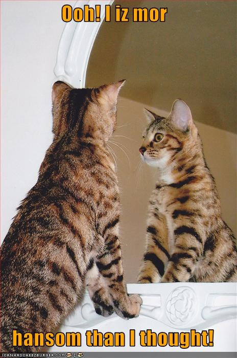 handsome,mirror