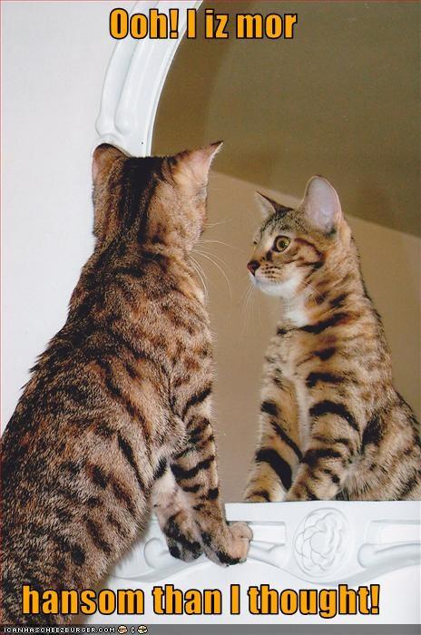 handsome mirror - 2523675904
