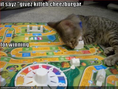 Cheezburger Image 2524473088